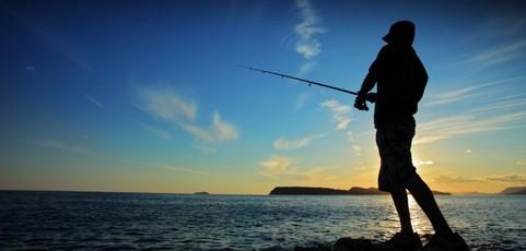 Le linkbaiting : la pêche aux liens naturels
